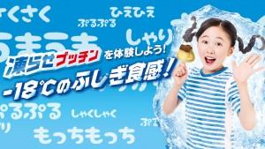 JAL羽田新路線就航記念 Twitterスペシャル企画